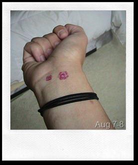 365 Tattoos D213-214
