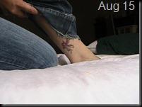 365 Tattoos D221(3)