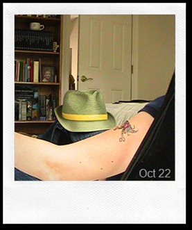 365 Tattoos D291